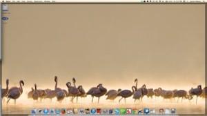 My computer desktop