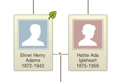 Pubic or private family trees?